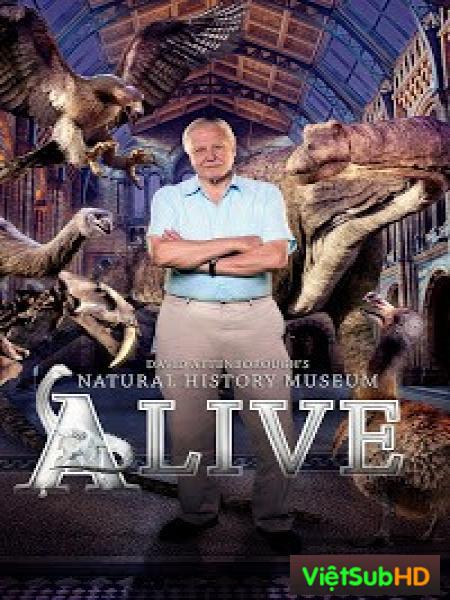 Bảo tàng tự nhiên sống của David Attenborough