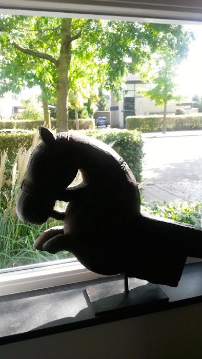 foto 11 paard.jpg