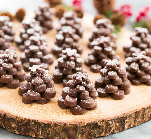 photo of Chocolate Pinecone Shortbread Cookies on a wooden board