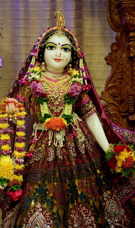 ISKCON GEV Deity Darshan 02 jan 2017 (10)
