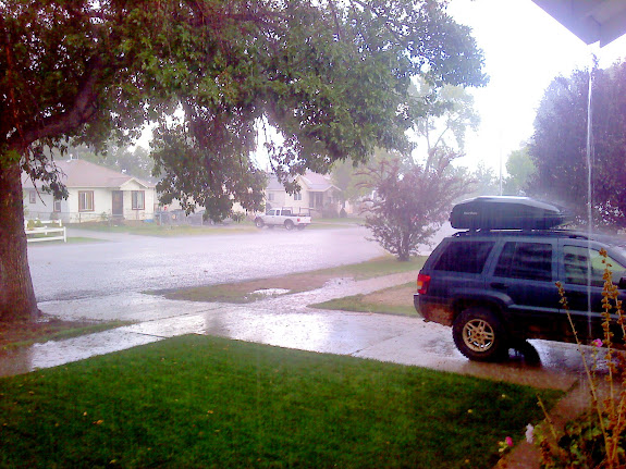 I watered my lawn, then it rained, hard. Sorry.