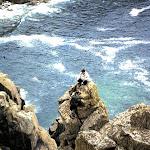 1964 Bosigran Porthmoina Island.jpg