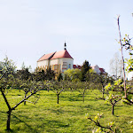 2015.04.23.,Klasztor wiosną,fot.H.L (15).jpg