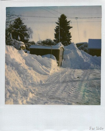 Jan 1988 snow in PR
