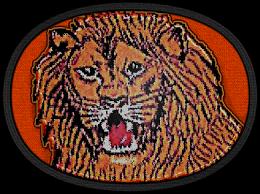 파일:attachment/육군 특수전사령부/ROK-SWC.png