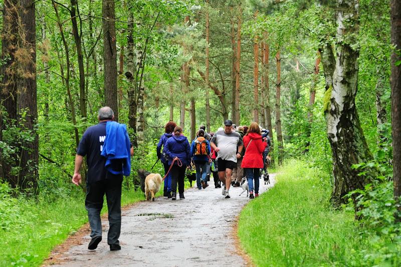 20130623 Erlebnisgruppe in Steinberger See (von Uwe Look) - DSC_3682.JPG
