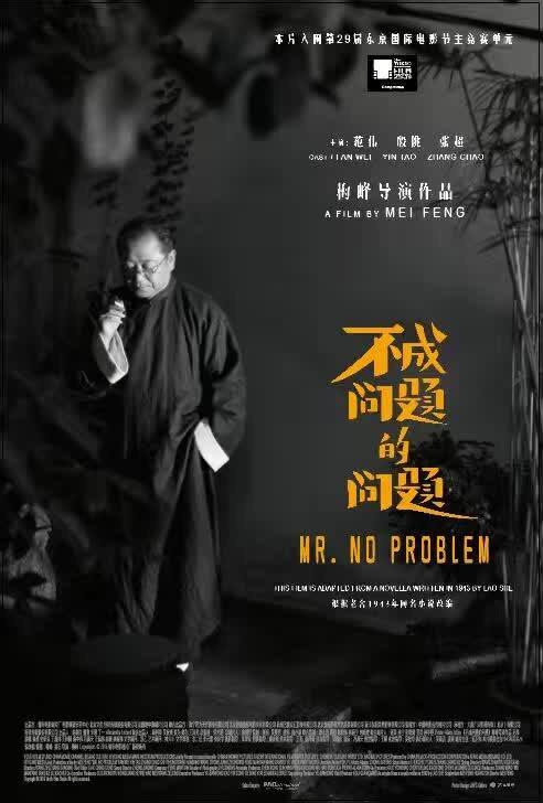 Mr. No Problem China Movie