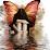 nikita ramos's profile photo
