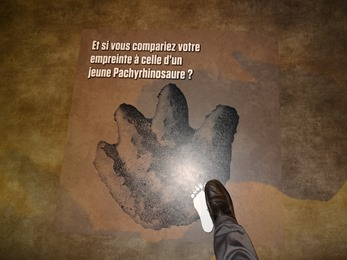 2018.04.30-006 trace de jeune Pachyrhinosaure