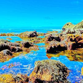 Reflection by Glen John Terry  - Landscapes Beaches ( seascape,  )