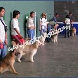 2003busturia002.jpg