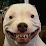 Felix Kjellberg (PewDiePie)'s profile photo