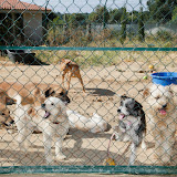 Quinta Life - Playtime
