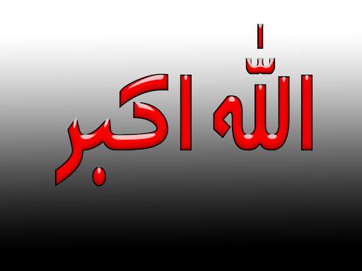 Mostafa Elsayed