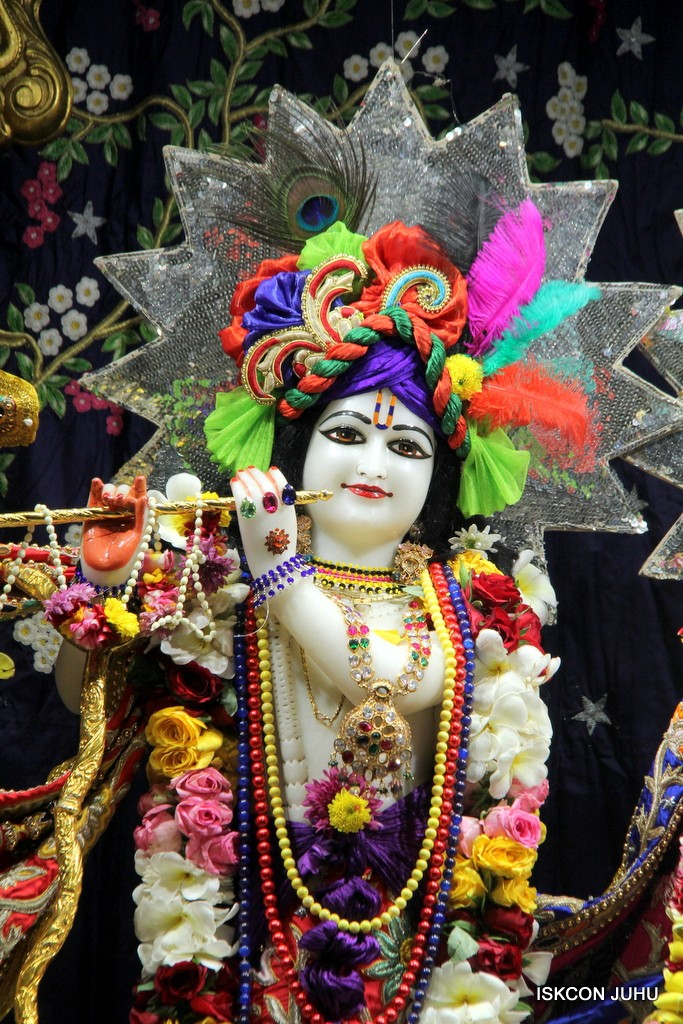 ISKCON Juhu Sringar Deity Darshan 22 Nov 2016 (8)
