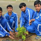 Gurukul Green Revolution (14).jpg