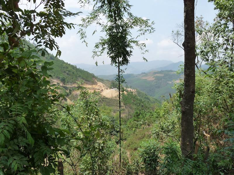 Chine .Yunnan,Menglian ,Tenchong, He shun, Chongning B - Picture%2B513.jpg