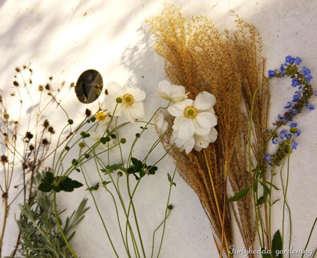 anemone bouquet 1