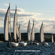 Whitesail League AUG (Paul Keal)