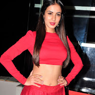 Sonal Chauhan at Size Zero Show