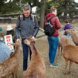 2014 Japan - Dag 8 - janita-SAM_6236.JPG
