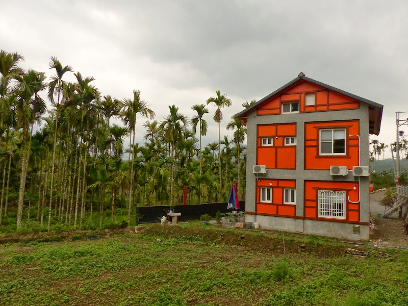 Puli, Nantou county, cueillette de thé - P1050602.JPG