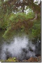 Rainy River-2