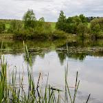 20140510_Fishing_Stara_Moshchanytsia_023.jpg