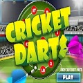 Play Cricket Darts Game