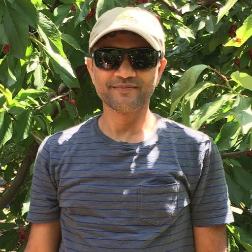 srinivasa R Yerabati's profile