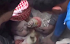 Em bé may mắn sống sót sau khi bị vùi dưới đống đổ nát ở Syria