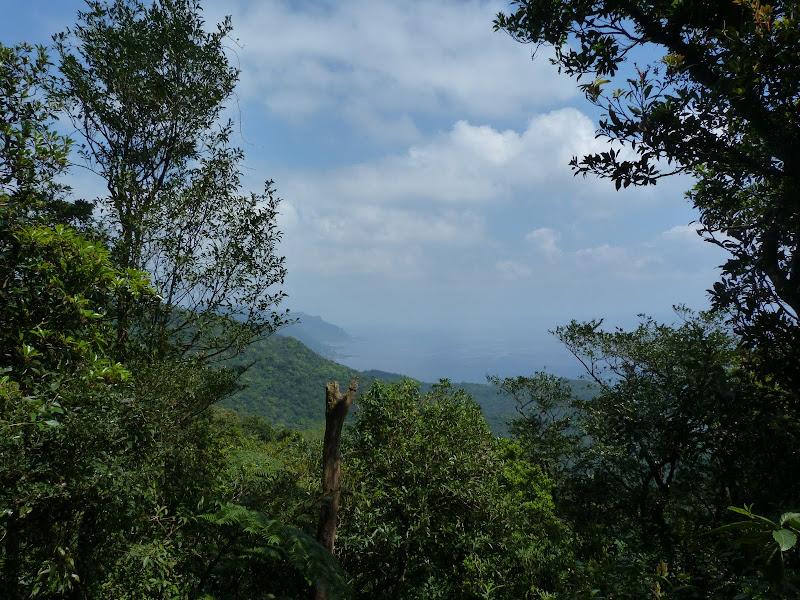 TAIWAN Daxi . Randonnée Taoyan valley - P1260022.JPG