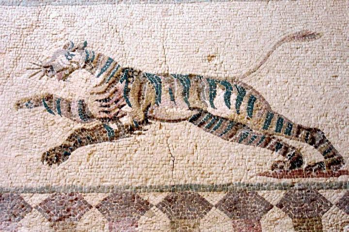 Os antigos mosaicos gregos de Paphos