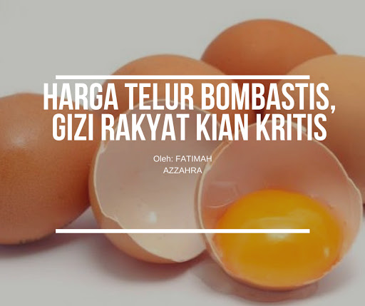 Harga Telur Bombastis, Gizi Rakyat Kian Kritis