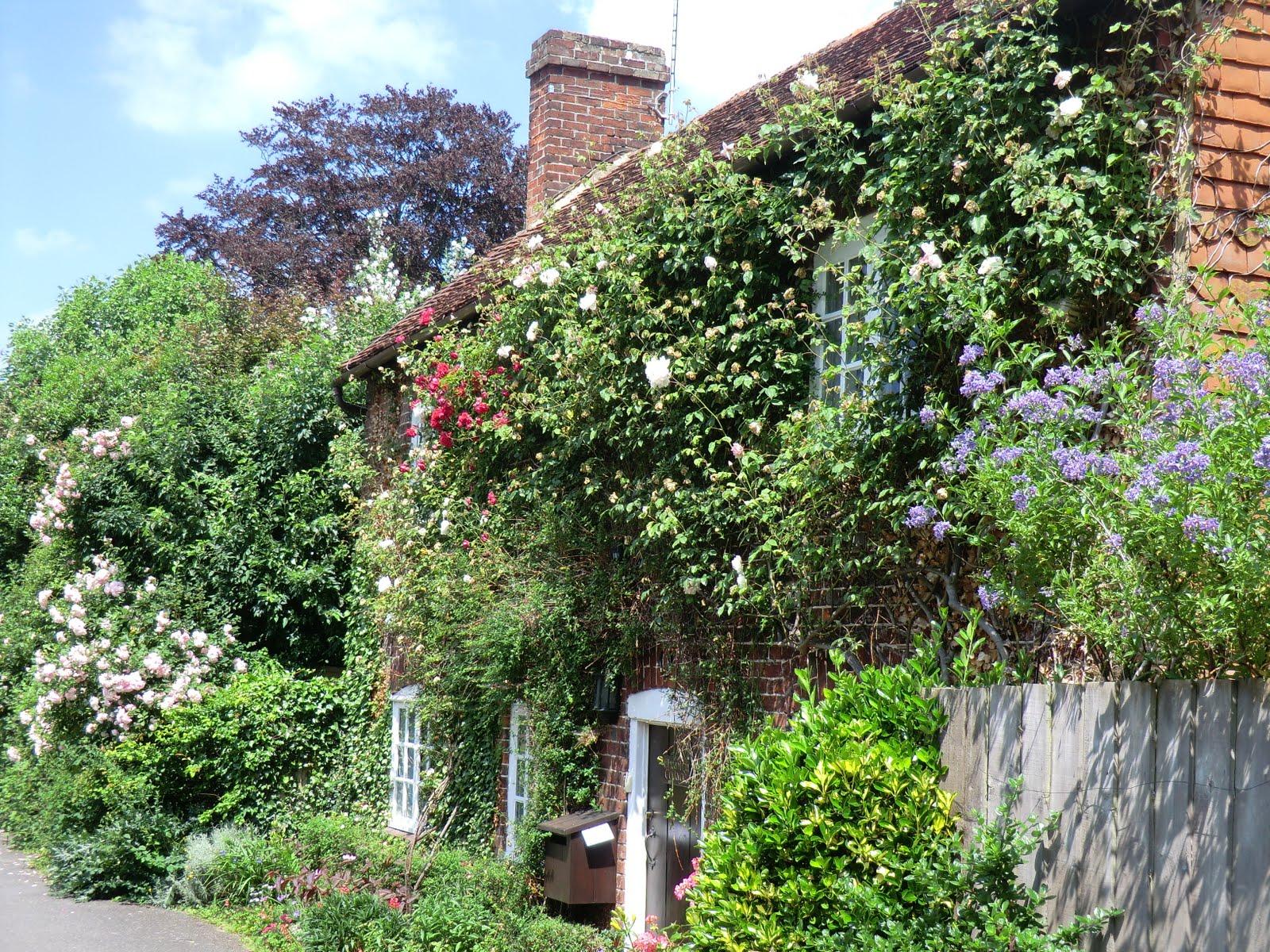 CIMG7471 Chantry Cottage, Otford