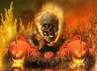 Halloween Sceleton