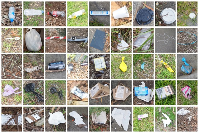 Litter this week, 33% biodegradeable 67% not!