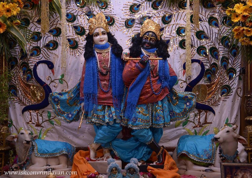 ISKCON Vrindavan Mangla Deity Darshan 26 Jan 2016 (8)