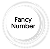 fancy number