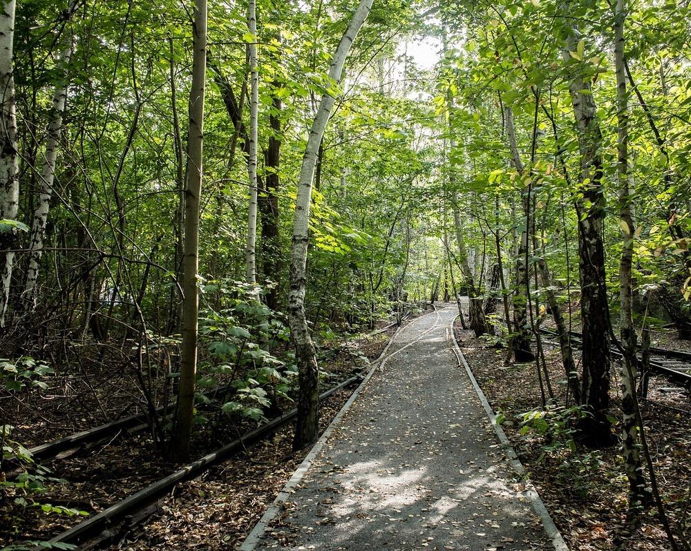 nature-park-sudgelande-2