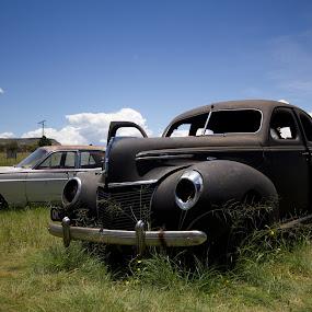 by Susan Pretorius - Transportation Automobiles (  )