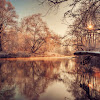 autumnal_lake_hd1080p.jpg