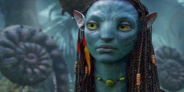 Screen Shot Of Hollywood Movie Avatar (2009) In Hindi English Full Movie Free Download And Watch Online at Alldownloads4u.Com