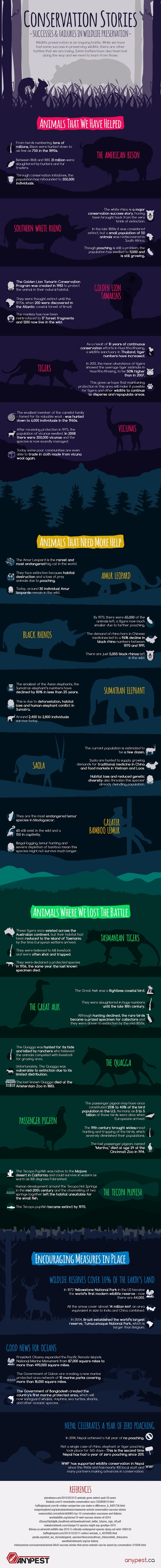 Image of My name is Brad Lewis and I am owner at Anypest. I regularly write about wildlife and I produced this info-graphic ( See Attached) outlining successes and failures in wildlife preservation. The info-graphic outlines areas of wildlife preservation where we have been successful, preservation battles we are losing, and battles we have already lost. For example the American Bison was hunted down to 750 in 1890, but thanks to preservation efforts this has increased to 350,000. Unfortunately there are other battles we are losing, such as with the beautiful Amur Leopard. There are now only 30 left, and we face a difficult fight to save them. The important thing is that there is still time to make a difference and it's not too late. Animals such as Tasmanian Tiger have been extinct since 1936 and there is nothing we can do about it, so let's hope the same doesn't happen to the Amur Leopard. Find out more about animals we need to save in the info-graphic!
