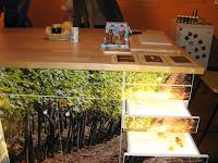 Részletek az Erdőjárók kalauza-Zemplén természeti értékeit bemutató kiállításból9.jpg