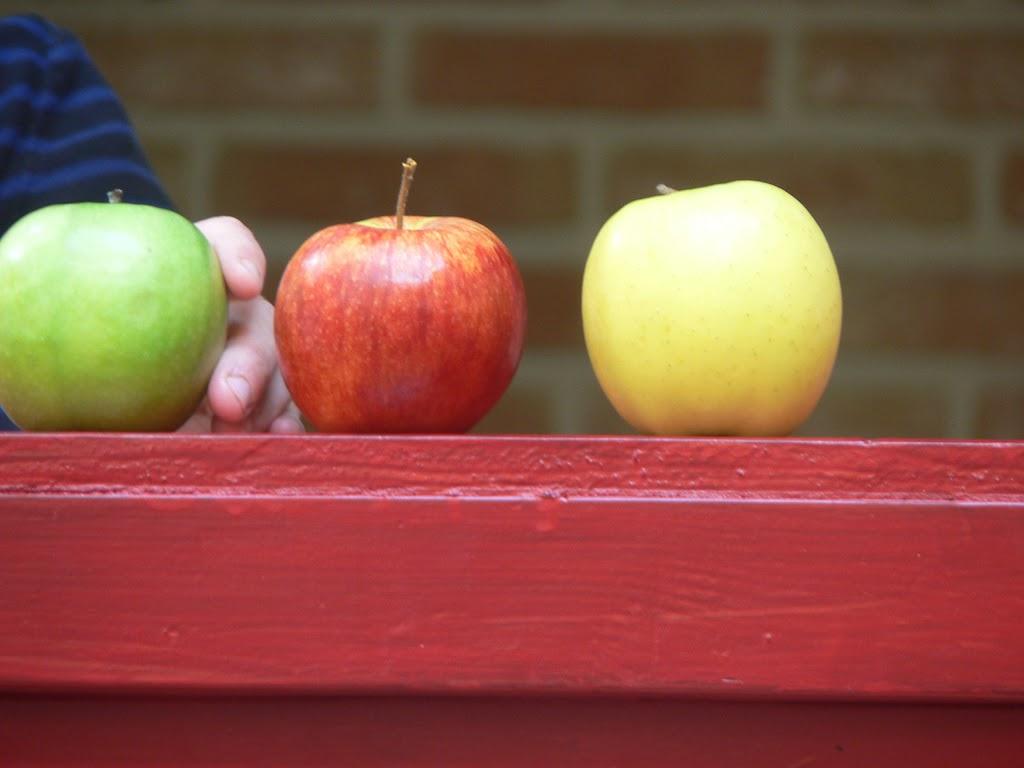 De Kleuters maken zelf een fruit- en groentewinkel. - P1260565.JPG