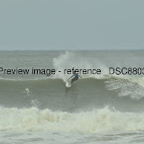 _DSC8803.JPG