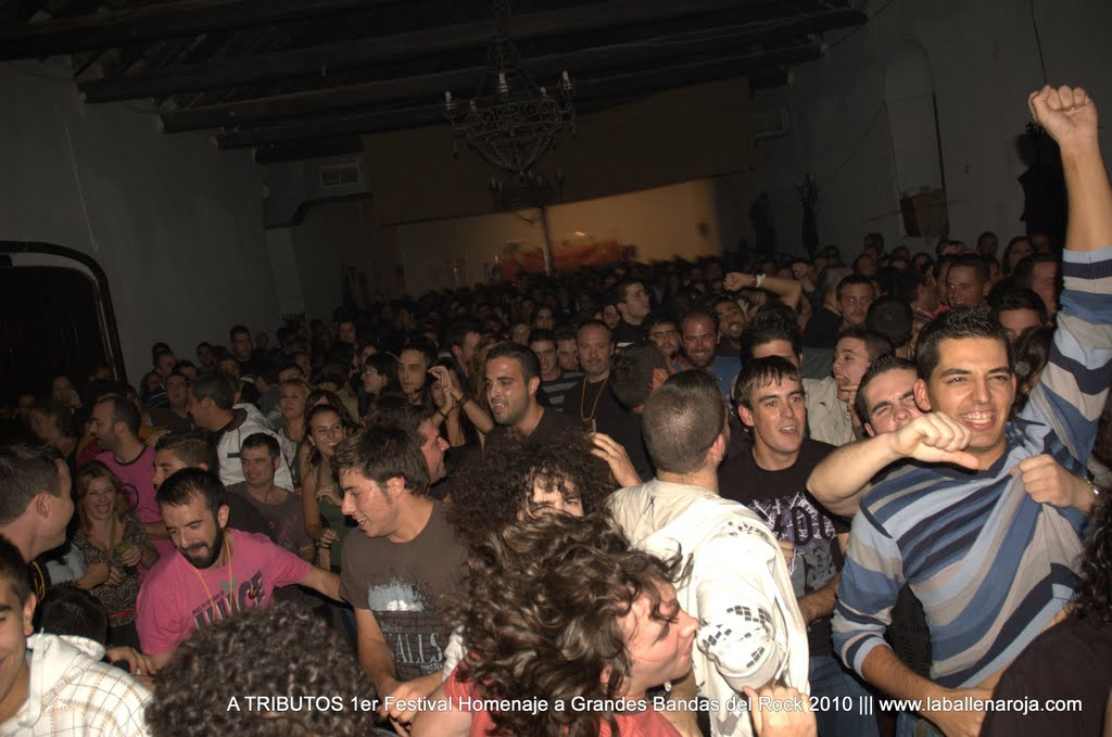 A TRIBUTOS 1er Festival Homenaje a Grandes Bandas del Rock 2010 - DSC_0161.jpg