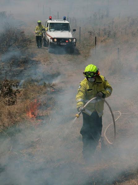 seasonal firefighters