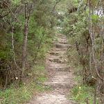 Fort Rock Track (13936)